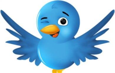 Review Twittervolger / tool voor meer volgers op Twitter